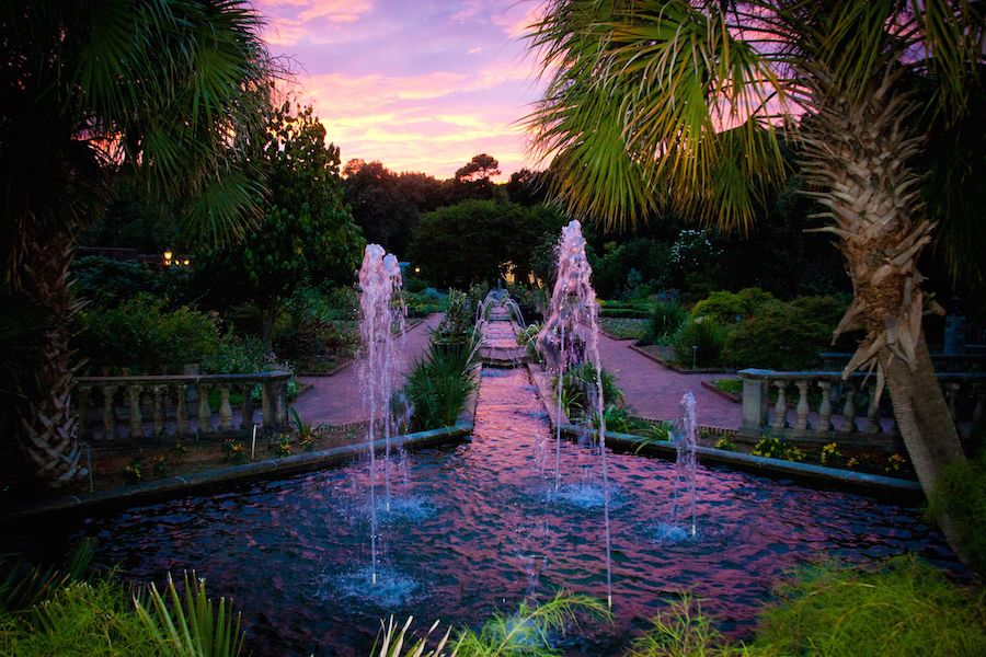 Weddings events and hospitality riverbanks zoo weddings at riverbanks with beautiful sunsets junglespirit Choice Image