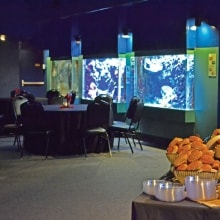 Special event space with aquarium and reptile setting in Columbia, South Carolina for weddings, corporate meeting and party occassions