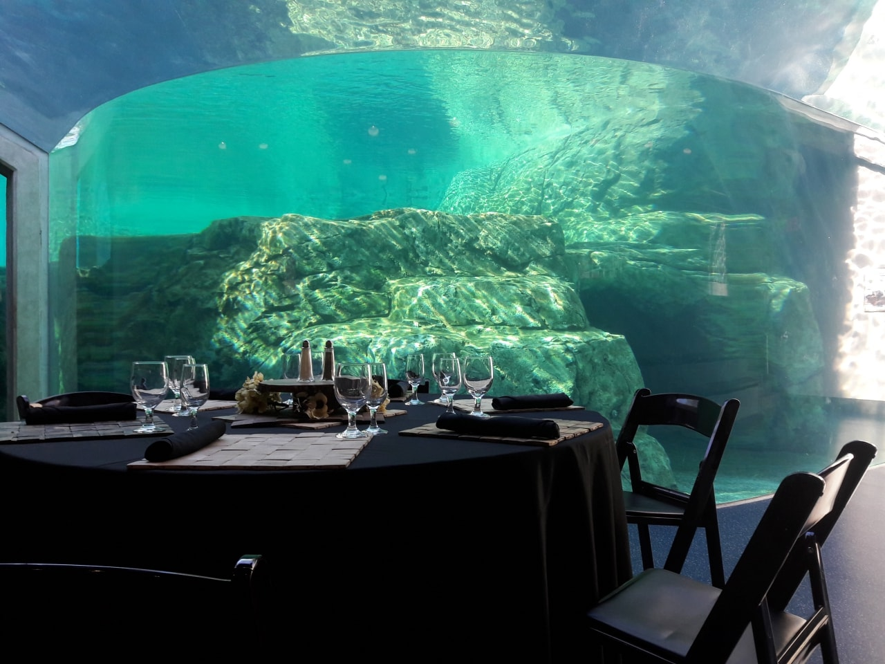 Corporate event venue with unique setting of sea animals in Columbia, SC