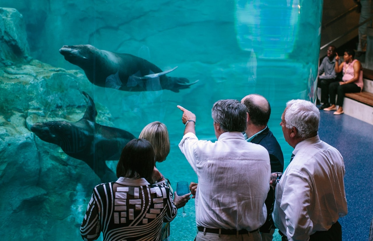 Unique event venue in Columbia, SC with sea lions