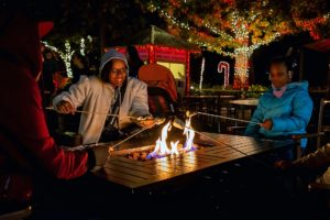 Roasting marshmallows for s'mores at a fun and unique holiday party at the Riverbanks Zoo