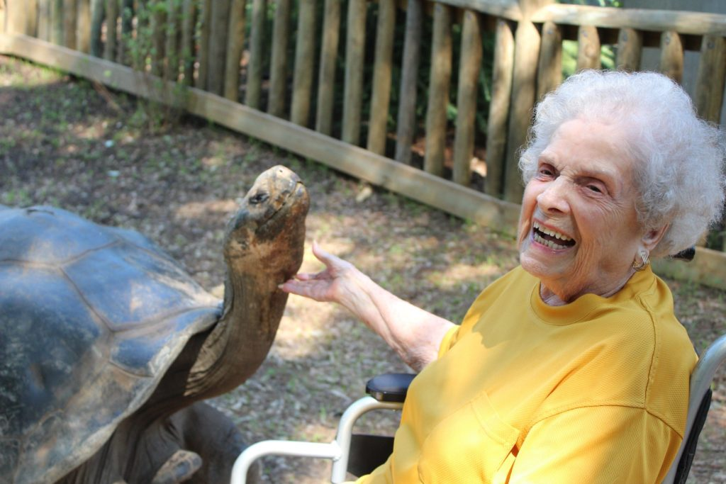 We hosted a 100th Birthday party in 2018 at Riverbanks Zoo!