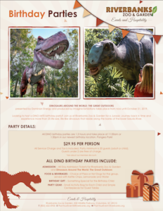 Dino Birthday Party Package 2019