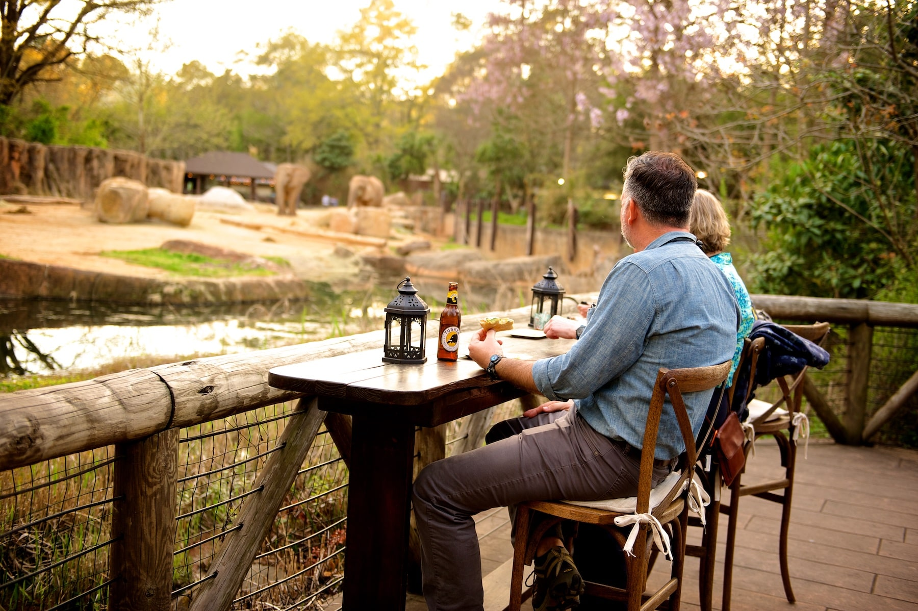 We offer unique event venues overlooking our elephant and now rhino enclosure in Columbia SC's Riverbanks Zoo.