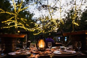 Riverbanks Zoo in Columbia, South Carolina, makes for a unique and fun company holiday party venue!
